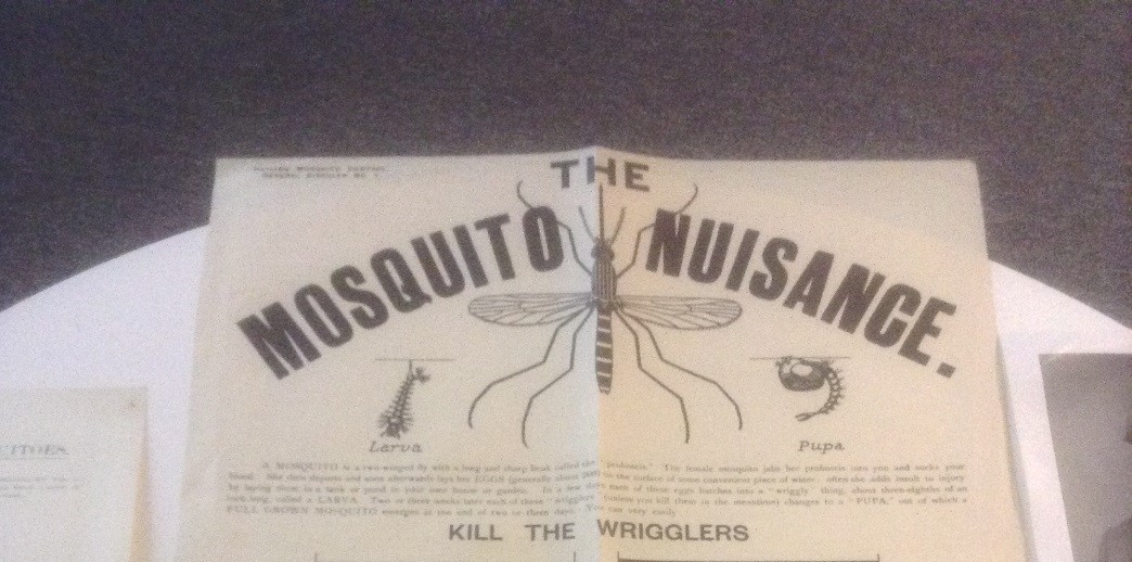A poster produced by the British Mosquito Control Institute in the 1920s